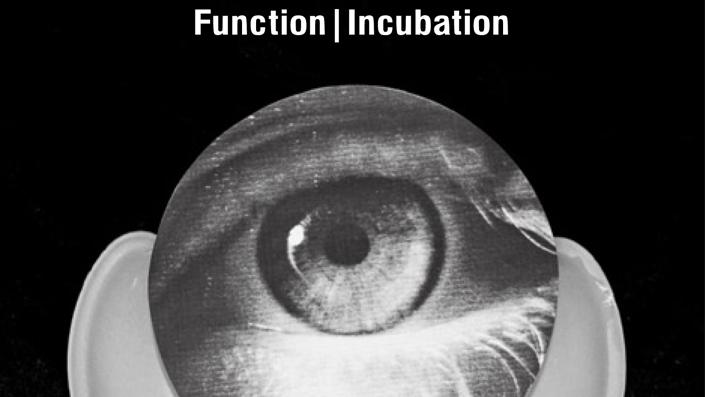 """Function veröffentlicht """"Incubation"""" auf OstGut Ton"""