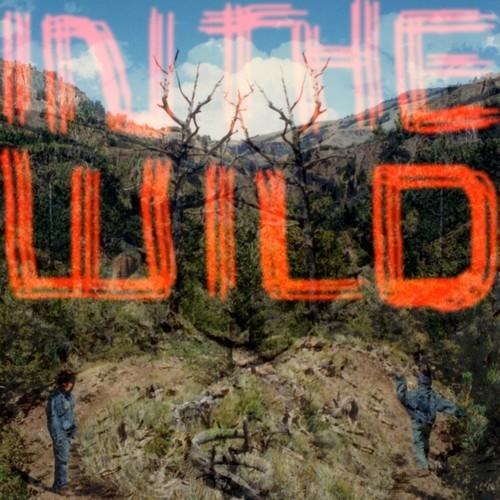 """FaltyDL veröffentlicht neues Album """"In The Wild"""""""