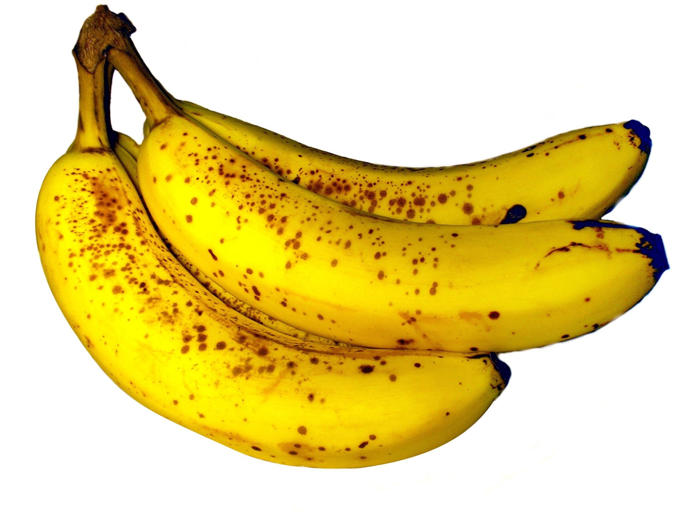 Bananenkisten sind nur der Anfang – Drogen kommen getarnt zu uns
